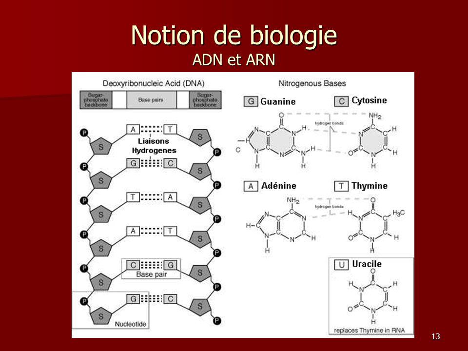 Notion de biologie ADN et ARN