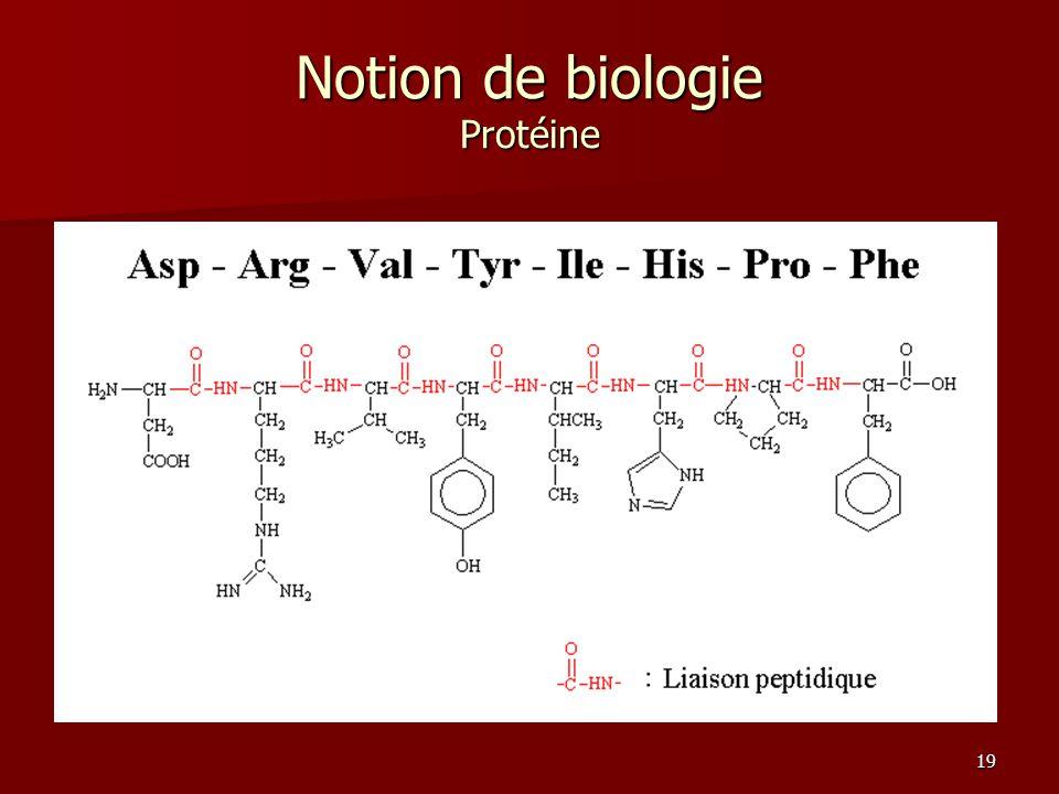 Notion de biologie Protéine