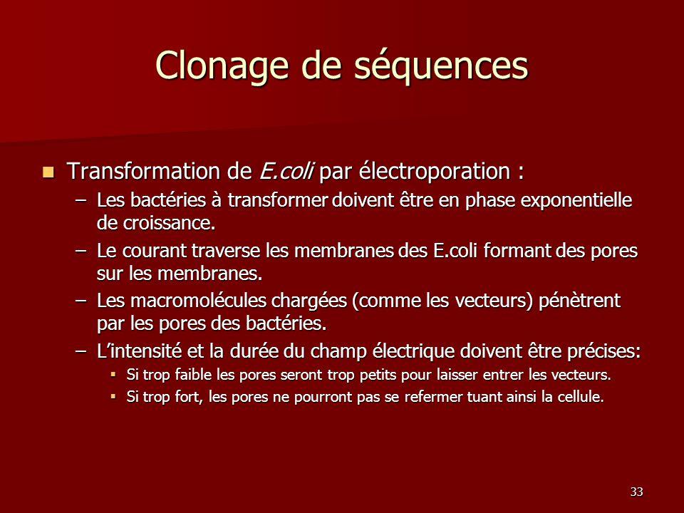 Clonage de séquences Transformation de E.coli par électroporation :