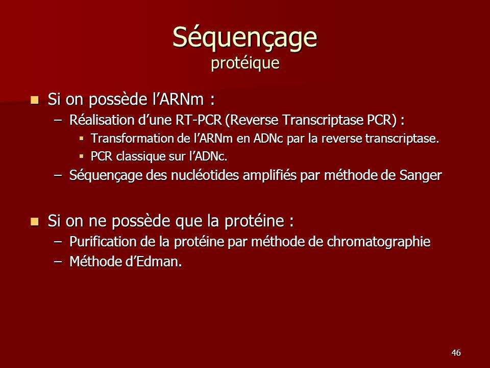 Séquençage protéique Si on possède l'ARNm :