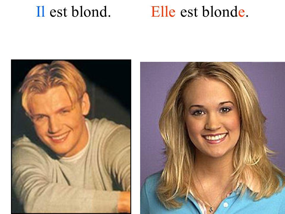 Il est blond. Elle est blonde.