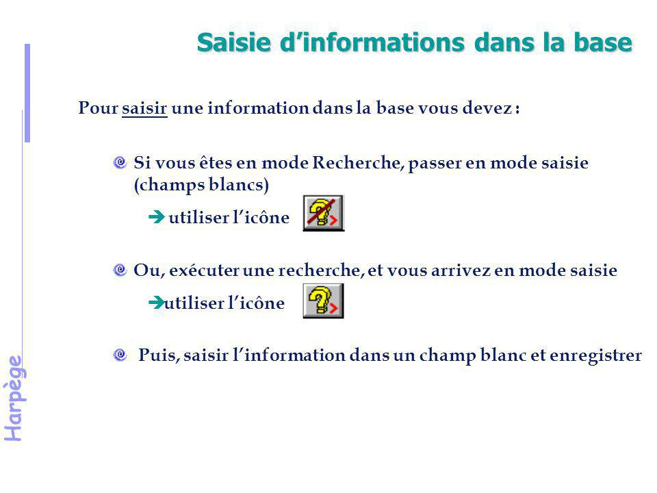 Saisie d'informations dans la base