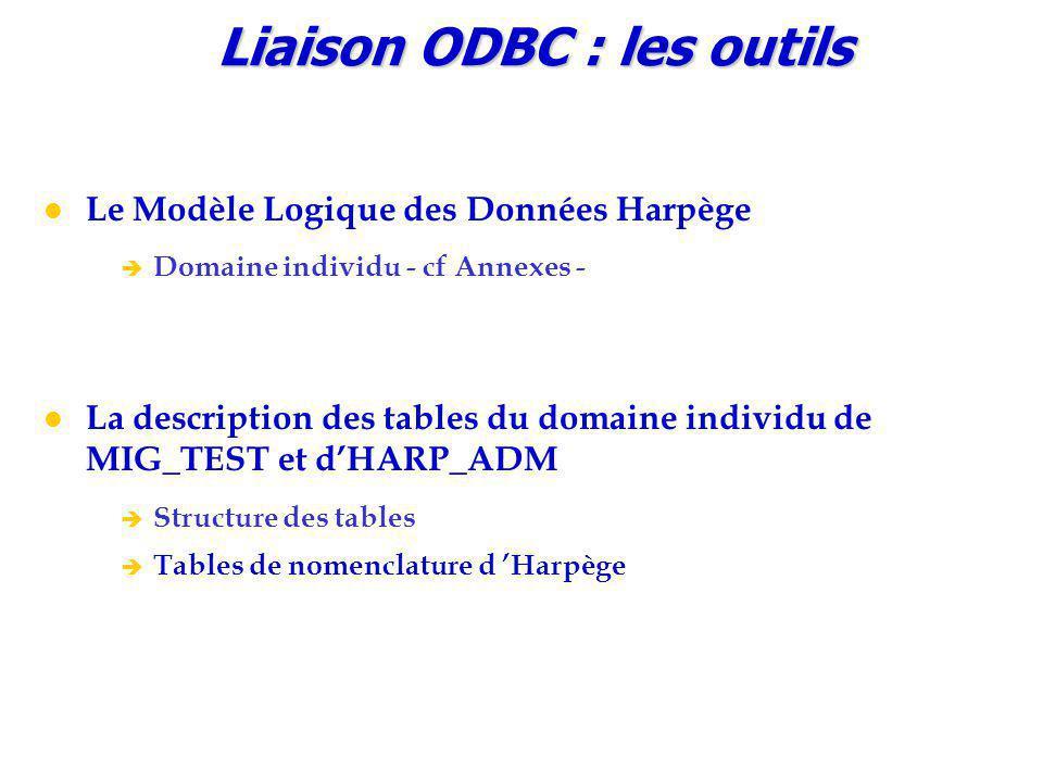 Liaison ODBC : les outils