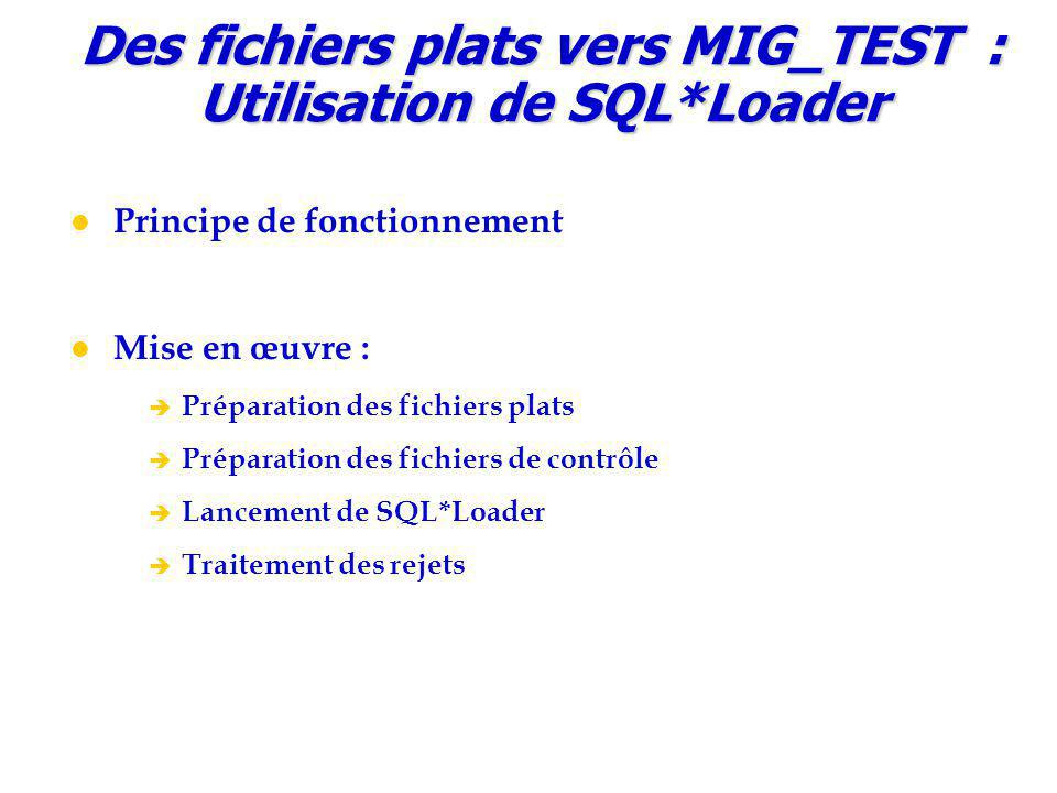 Des fichiers plats vers MIG_TEST : Utilisation de SQL*Loader
