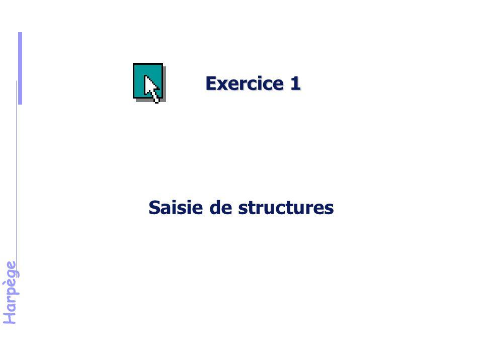 Exercice 1 Saisie de structures