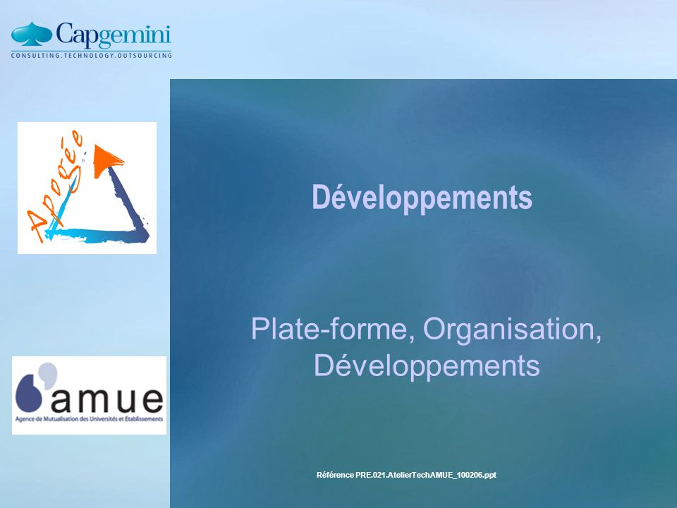 Plate-forme, Organisation, Développements
