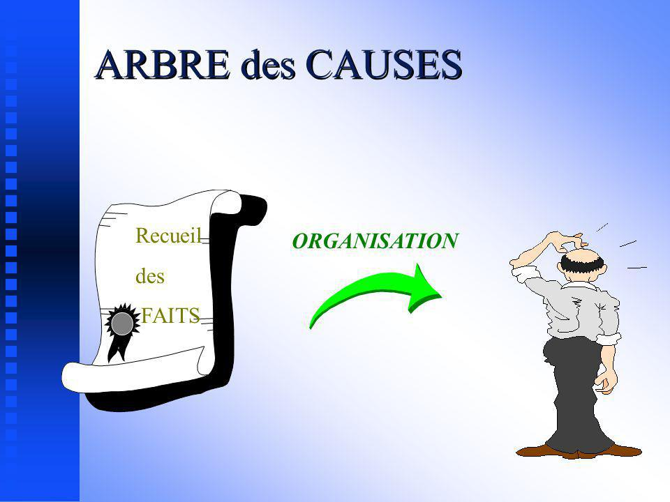 ARBRE des CAUSES Recueil des FAITS ORGANISATION
