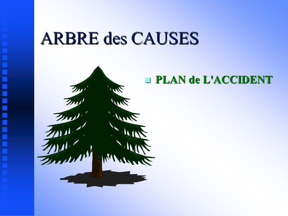 ARBRE des CAUSES PLAN de L ACCIDENT
