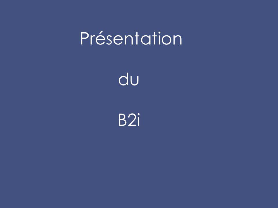 Présentation du B2i Co-TIC : Correspondant d'établissement en Technologies de l' Information et de la Communication.