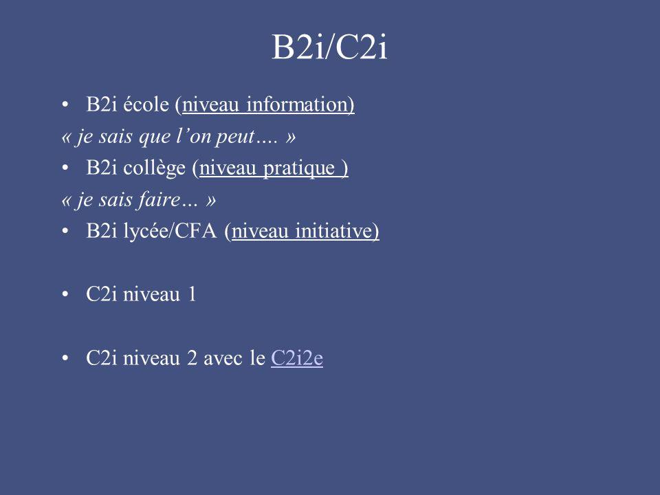 B2i/C2i B2i école (niveau information) « je sais que l'on peut…. »