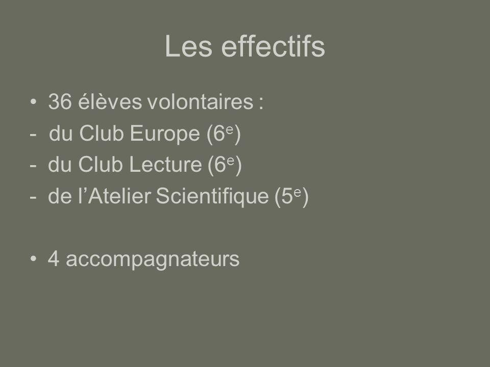 Les effectifs 36 élèves volontaires : - du Club Europe (6e)