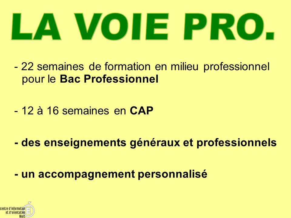 LA VOIE PRO. - 22 semaines de formation en milieu professionnel pour le Bac Professionnel. - 12 à 16 semaines en CAP.