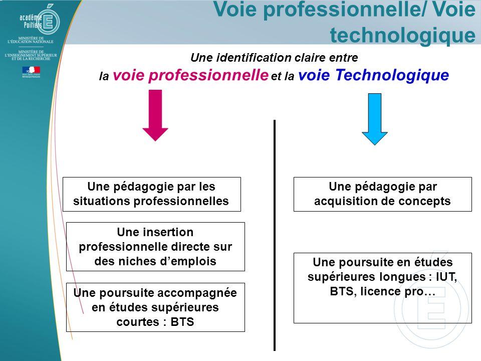 Voie professionnelle/ Voie technologique