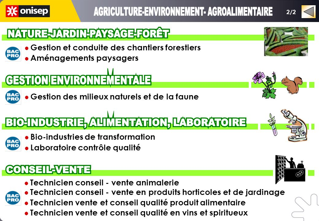 AGRICULTURE-ENVIRONNEMENT- AGROALIMENTAIRE NATURE-JARDIN-PAYSAGE-FORÊT