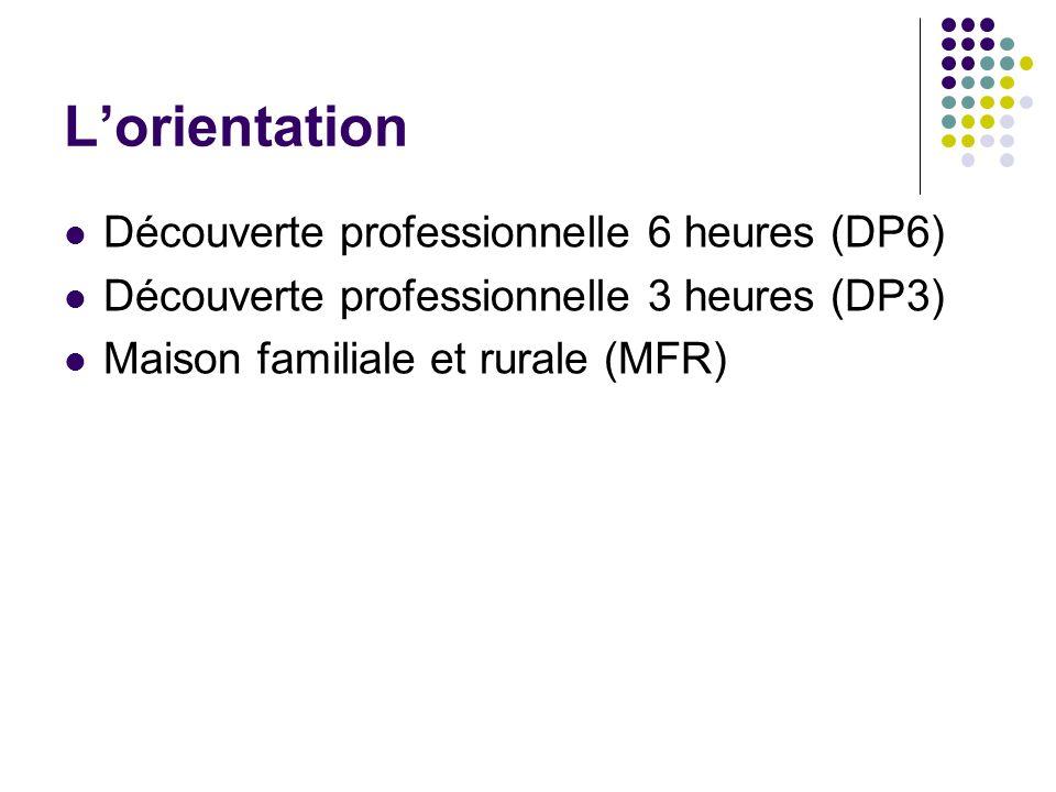 L'orientation Découverte professionnelle 6 heures (DP6)