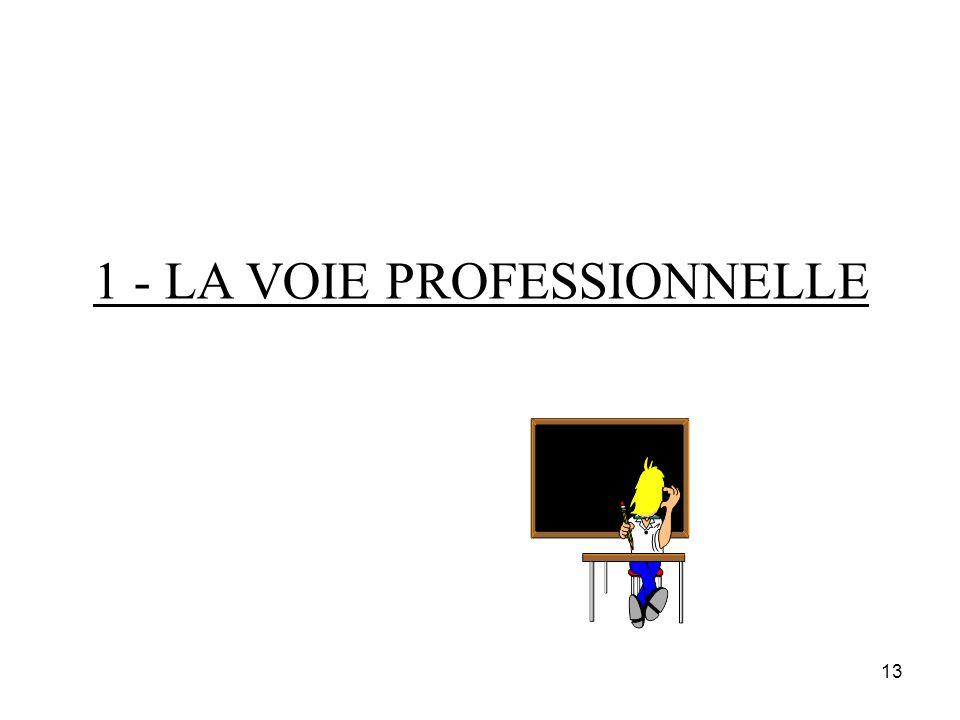 1 - LA VOIE PROFESSIONNELLE