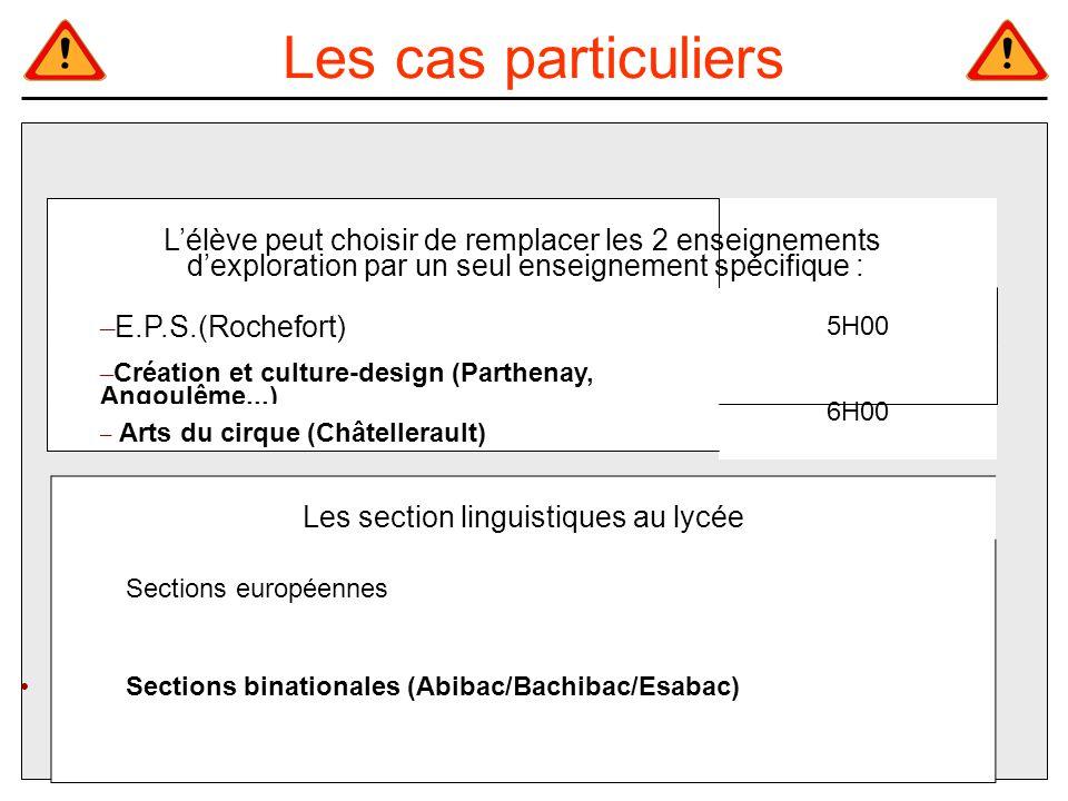 Les section linguistiques au lycée