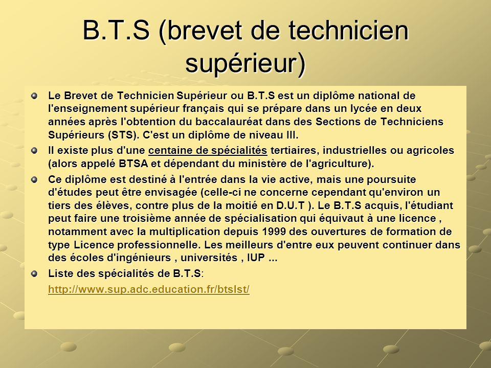 B.T.S (brevet de technicien supérieur)