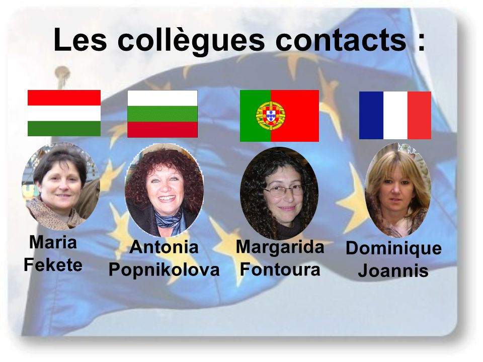 Les collègues contacts :