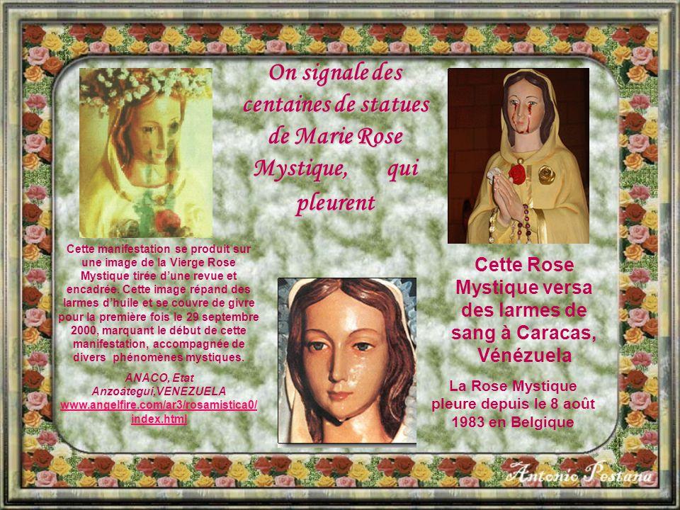 On signale des centaines de statues de Marie Rose Mystique, qui pleurent