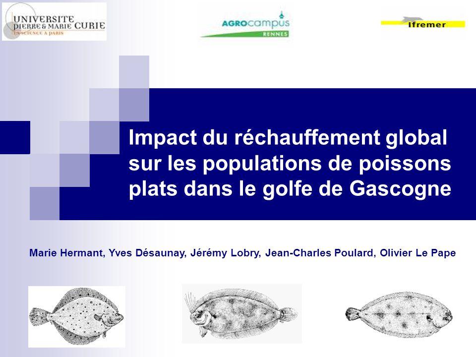 Impact du réchauffement global sur les populations de poissons plats dans le golfe de Gascogne