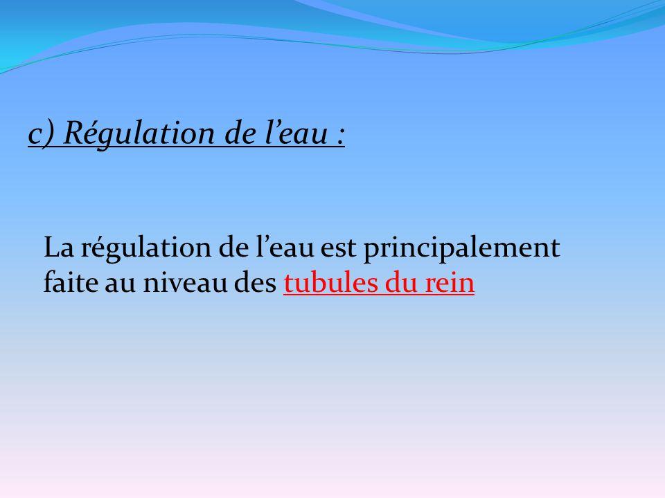 c) Régulation de l'eau :