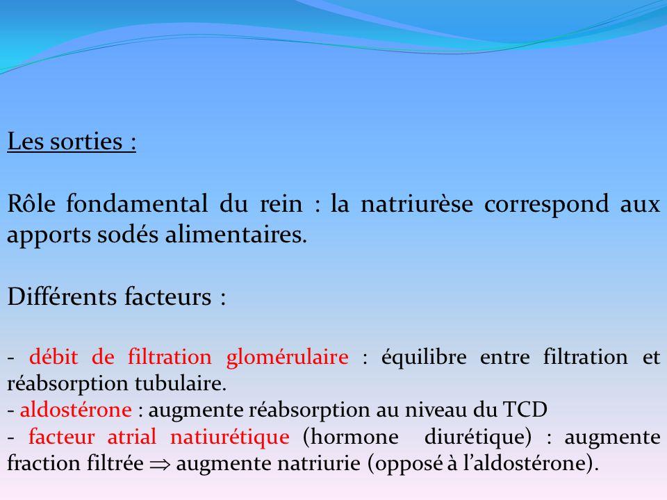 Les sorties : Rôle fondamental du rein : la natriurèse correspond aux apports sodés alimentaires. Différents facteurs :
