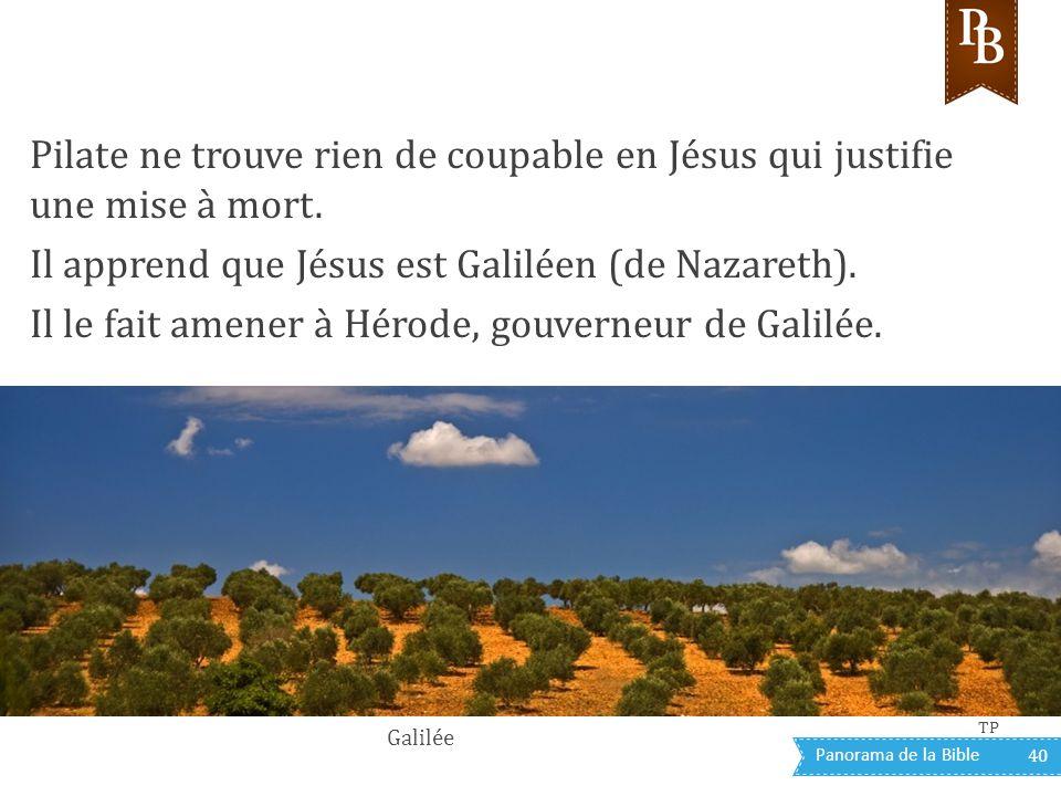 Il apprend que Jésus est Galiléen (de Nazareth).