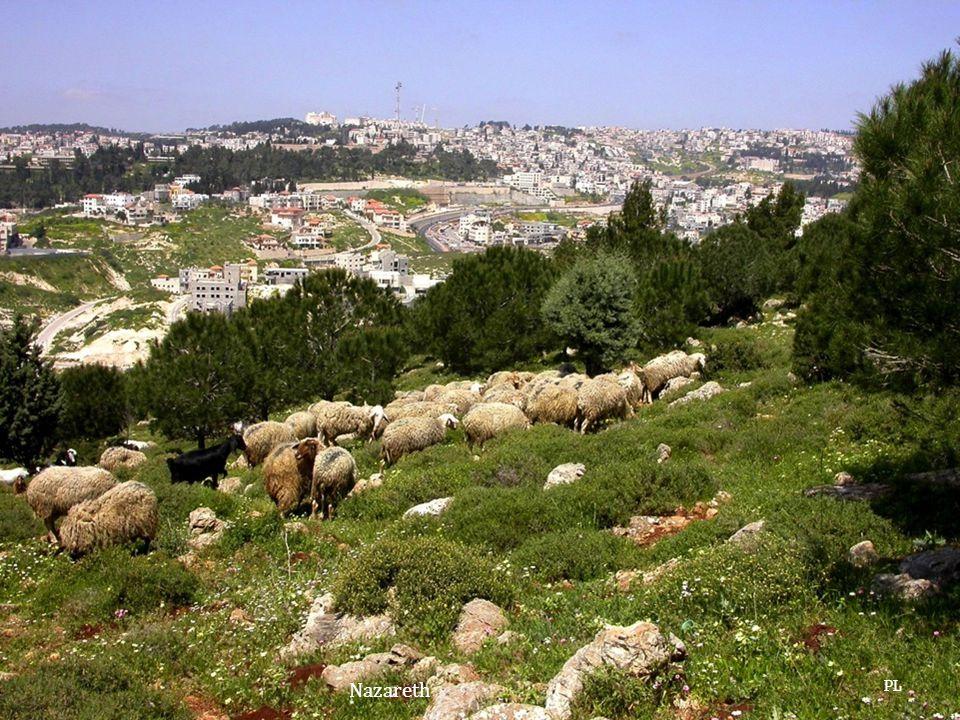 Nazareth PL
