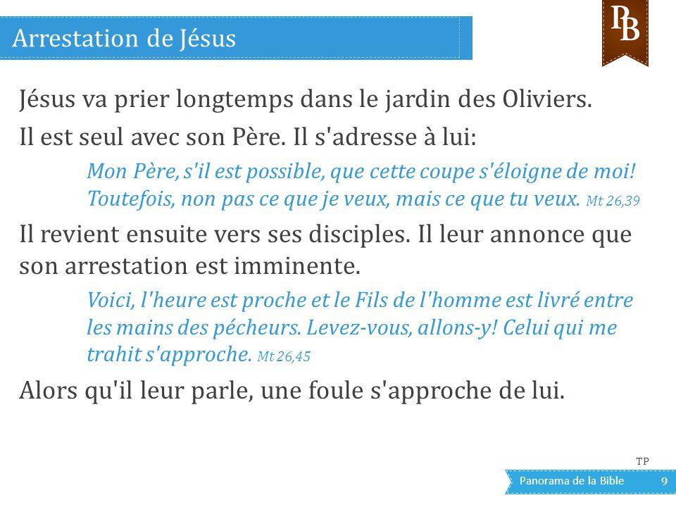 Jésus va prier longtemps dans le jardin des Oliviers.