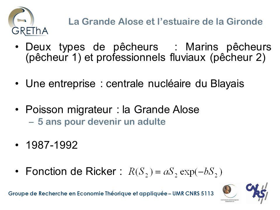 La Grande Alose et l'estuaire de la Gironde