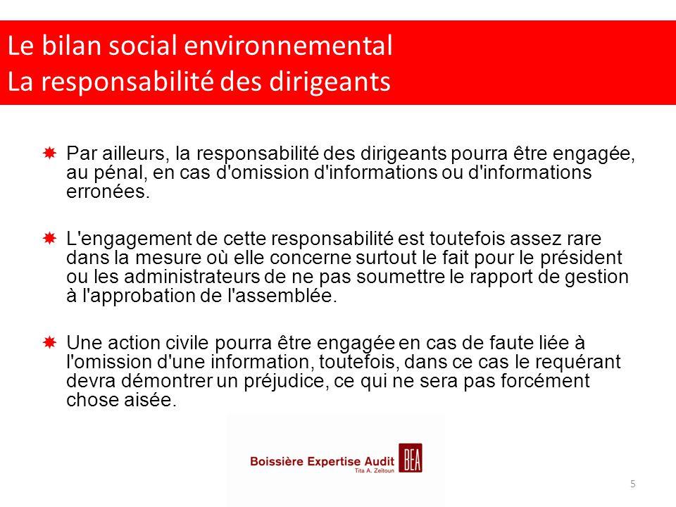 Le bilan social environnemental La responsabilité des dirigeants