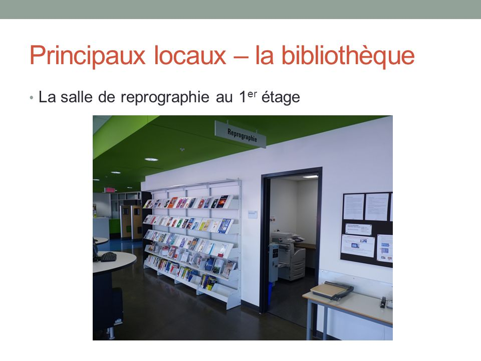 Principaux locaux – la bibliothèque