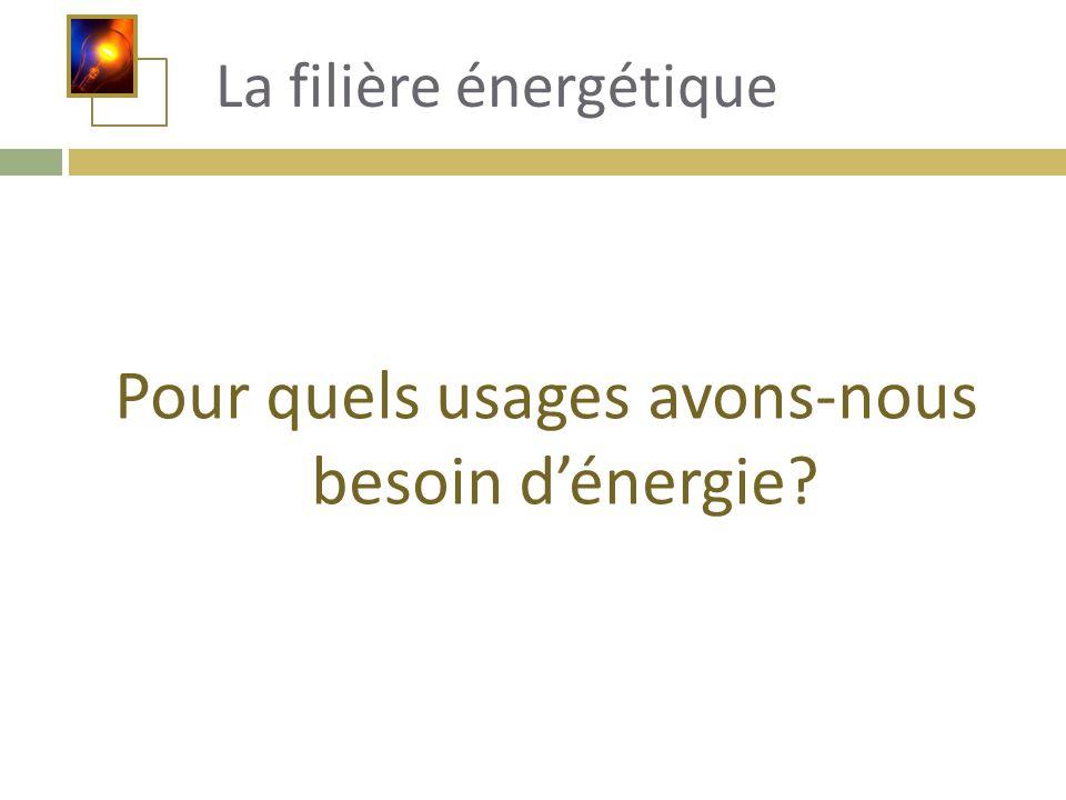 Pour quels usages avons-nous besoin d'énergie