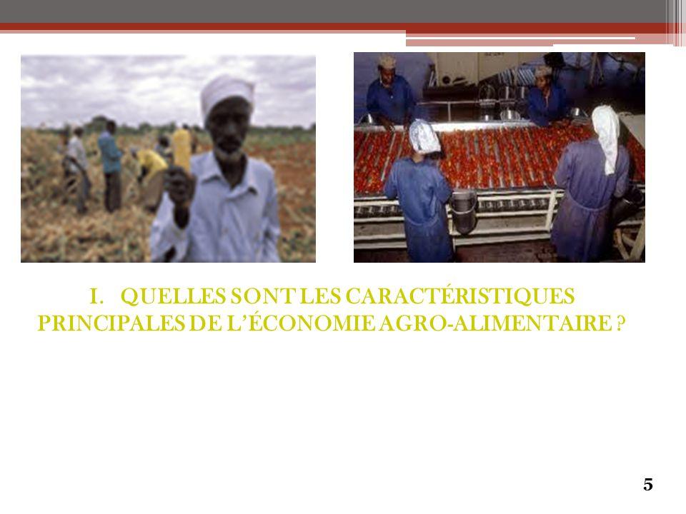 I. QUELLES SONT LES CARACTÉRISTIQUES PRINCIPALES DE L'ÉCONOMIE AGRO-ALIMENTAIRE