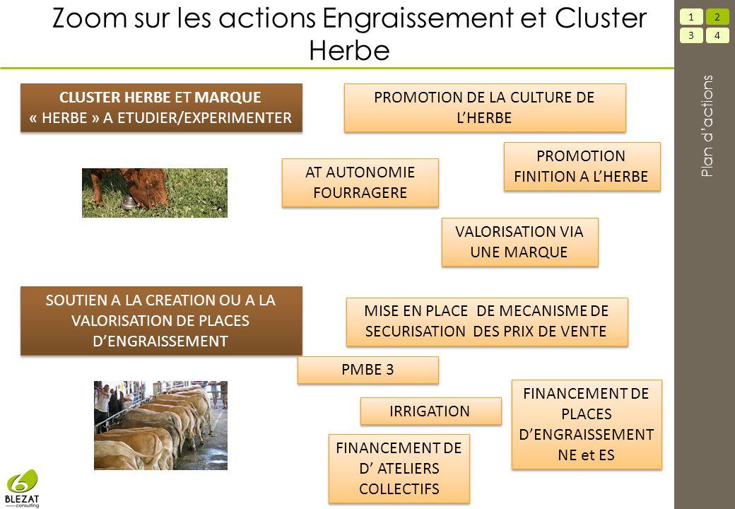 Zoom sur les actions Engraissement et Cluster Herbe