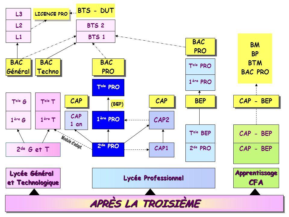 Module d adapt. APRÈS LA TROISIÈME CFA BTS - DUT BM BP BTM BAC PRO BAC