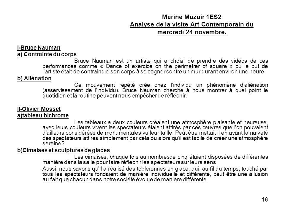 Marine Mazuir 1ES2 Analyse de la visite Art Contemporain du mercredi 24 novembre.
