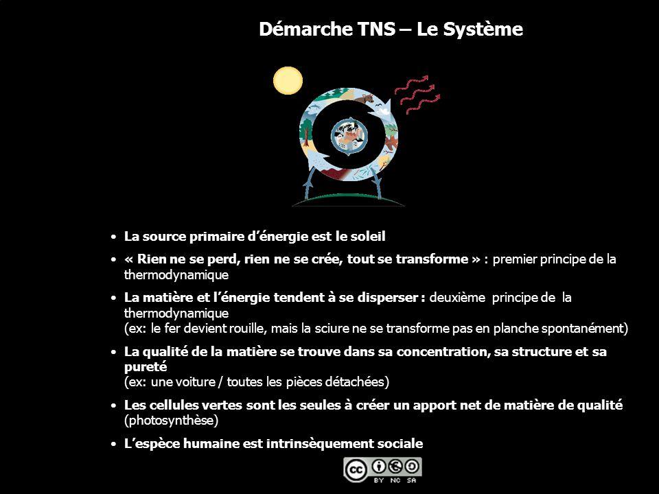 Démarche TNS – Le Système
