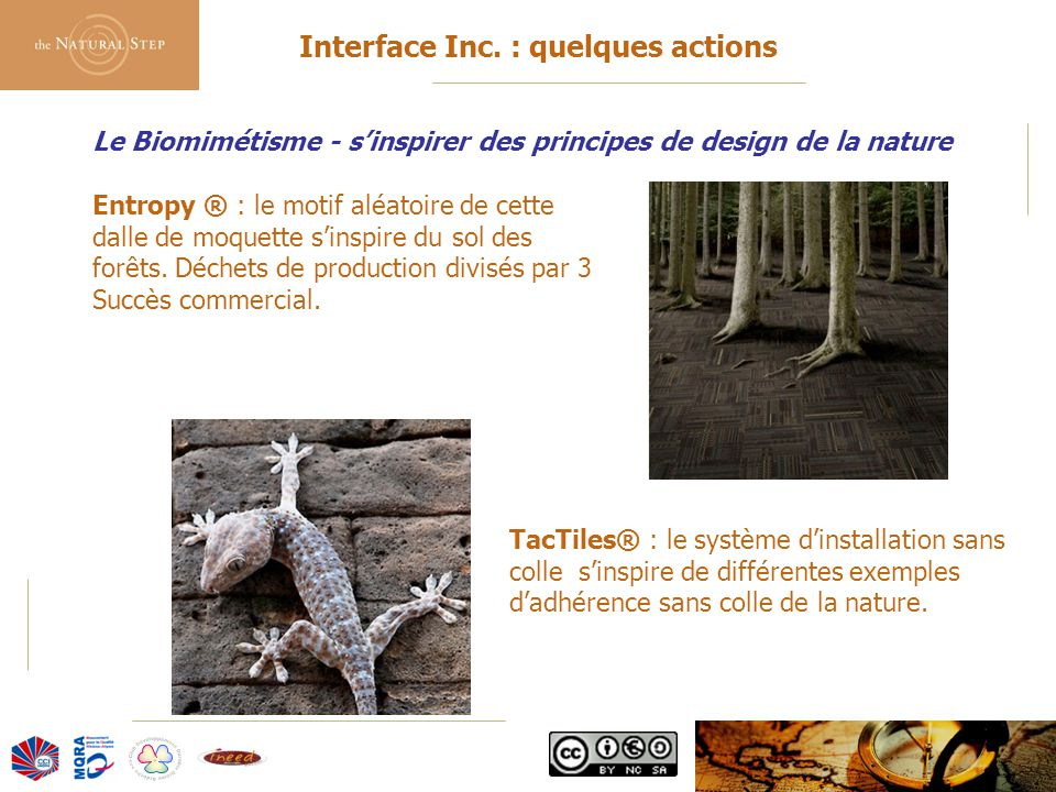 Interface Inc. : quelques actions