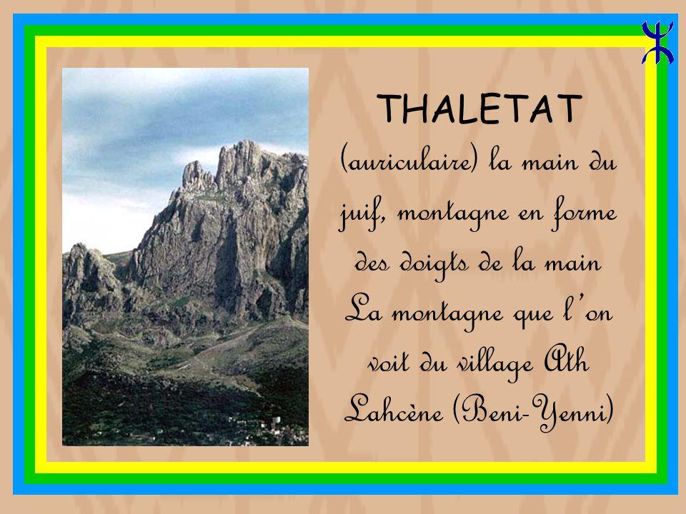 La montagne que l'on voit du village Ath Lahcène (Beni-Yenni)