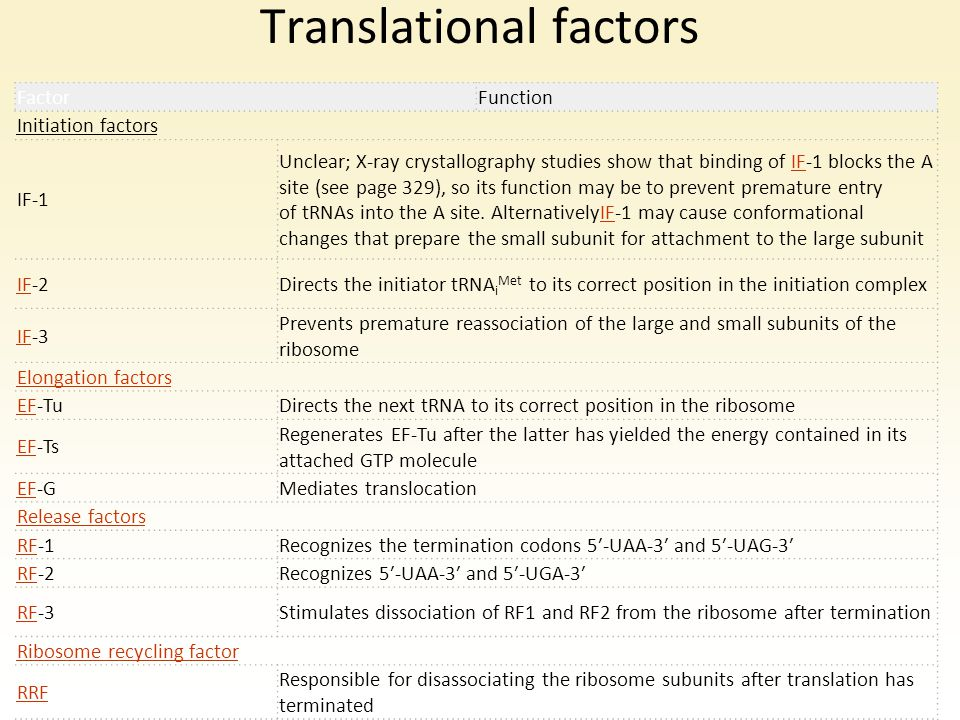 Translational factors
