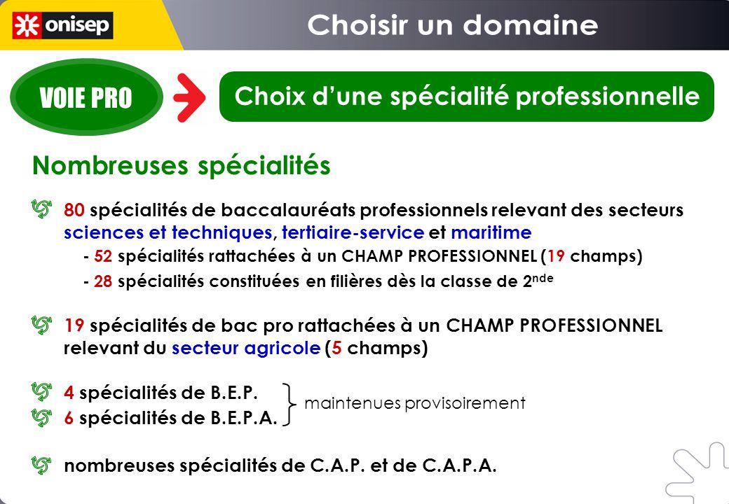 Choix d'une spécialité professionnelle
