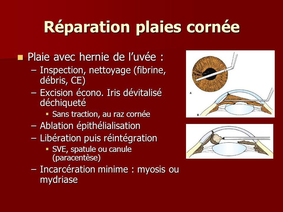 Réparation plaies cornée