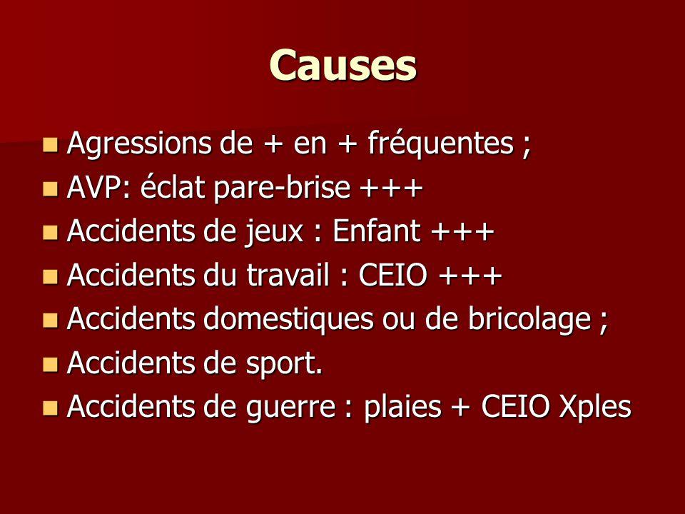 Causes Agressions de + en + fréquentes ; AVP: éclat pare-brise +++