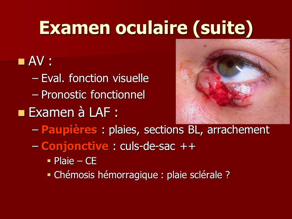 Examen oculaire (suite)