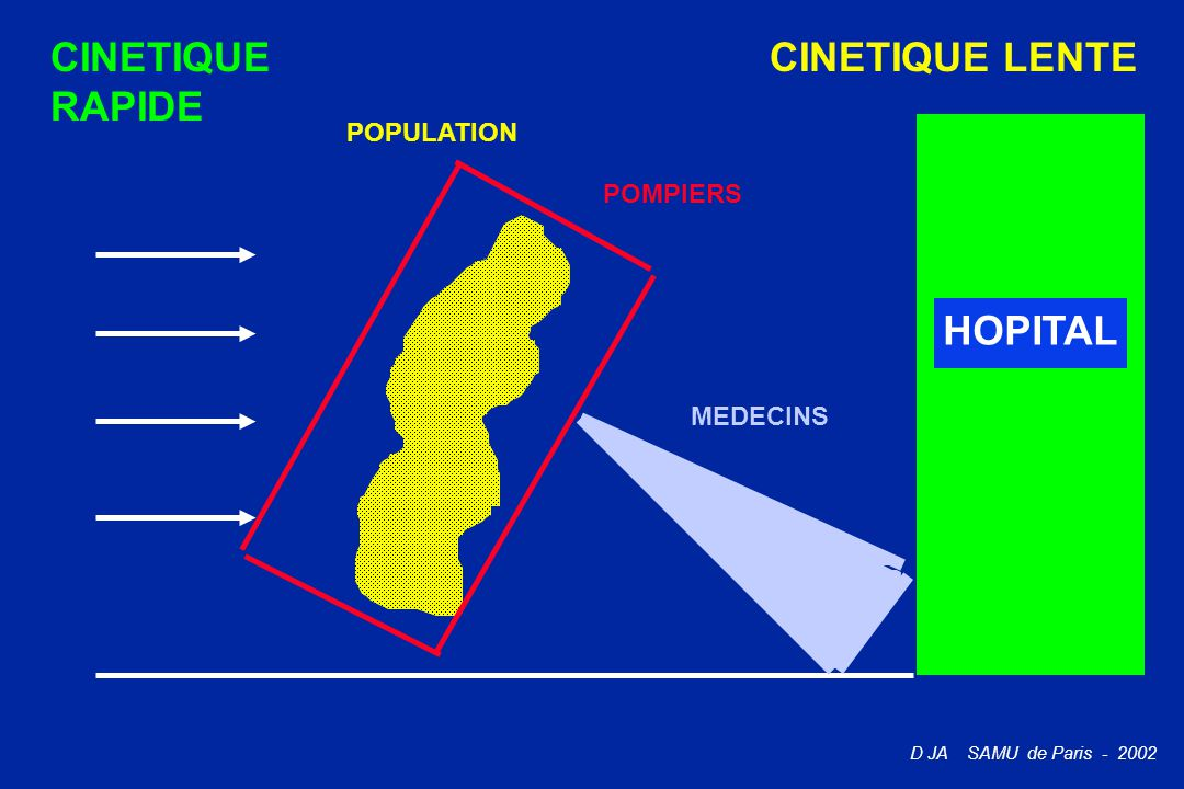 CINETIQUE RAPIDE CINETIQUE LENTE POPULATION POMPIERS HOPITAL MEDECINS