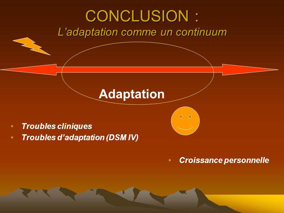 CONCLUSION : L'adaptation comme un continuum