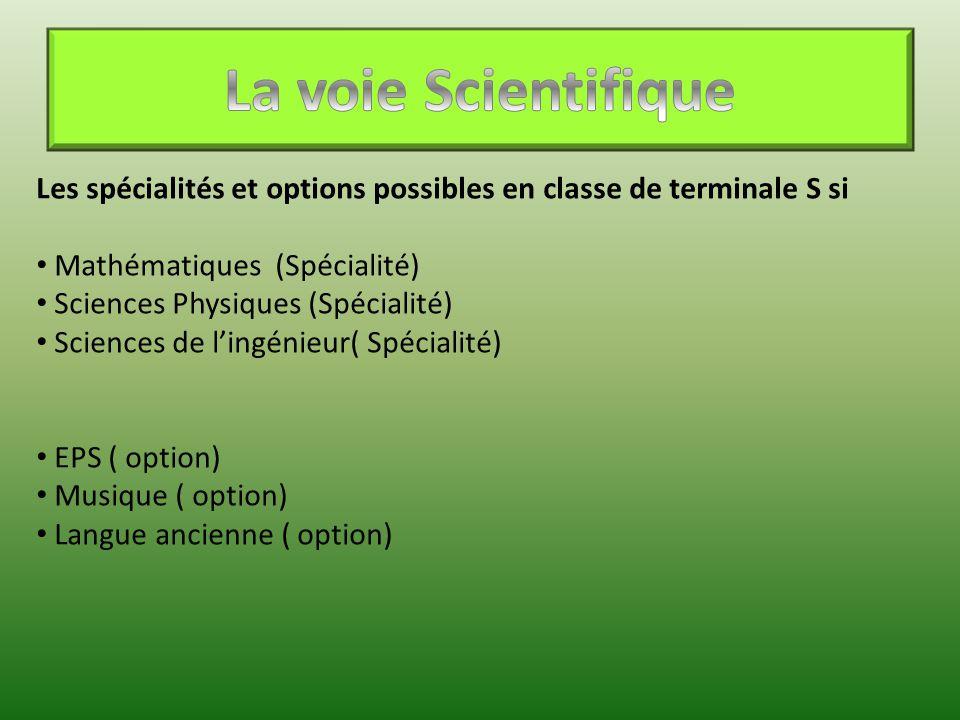La voie Scientifique Les spécialités et options possibles en classe de terminale S si. Mathématiques (Spécialité)