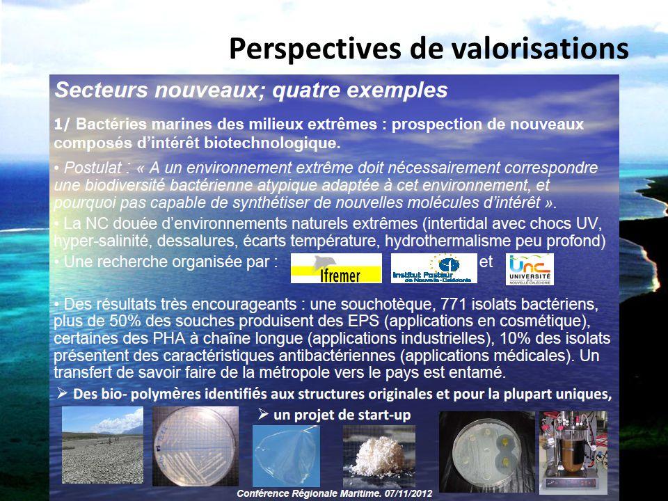 Perspectives de valorisations
